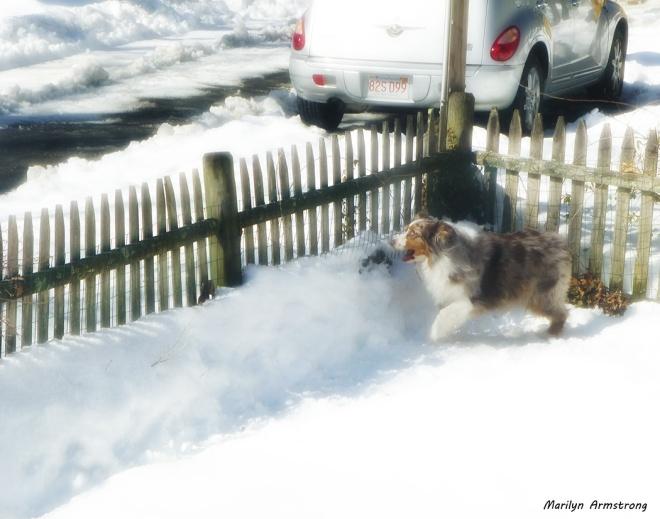 75-Bishop-in-Snow_27