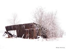 Hadley shack 74