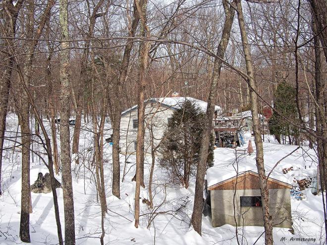 Neighbor in winter