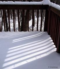 fresh snow bird tracks 14