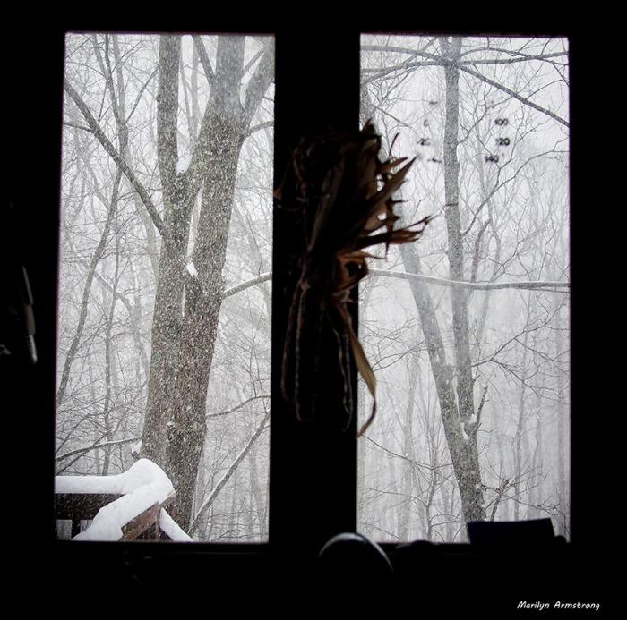 february snow 05