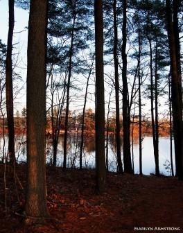 river in winter 00