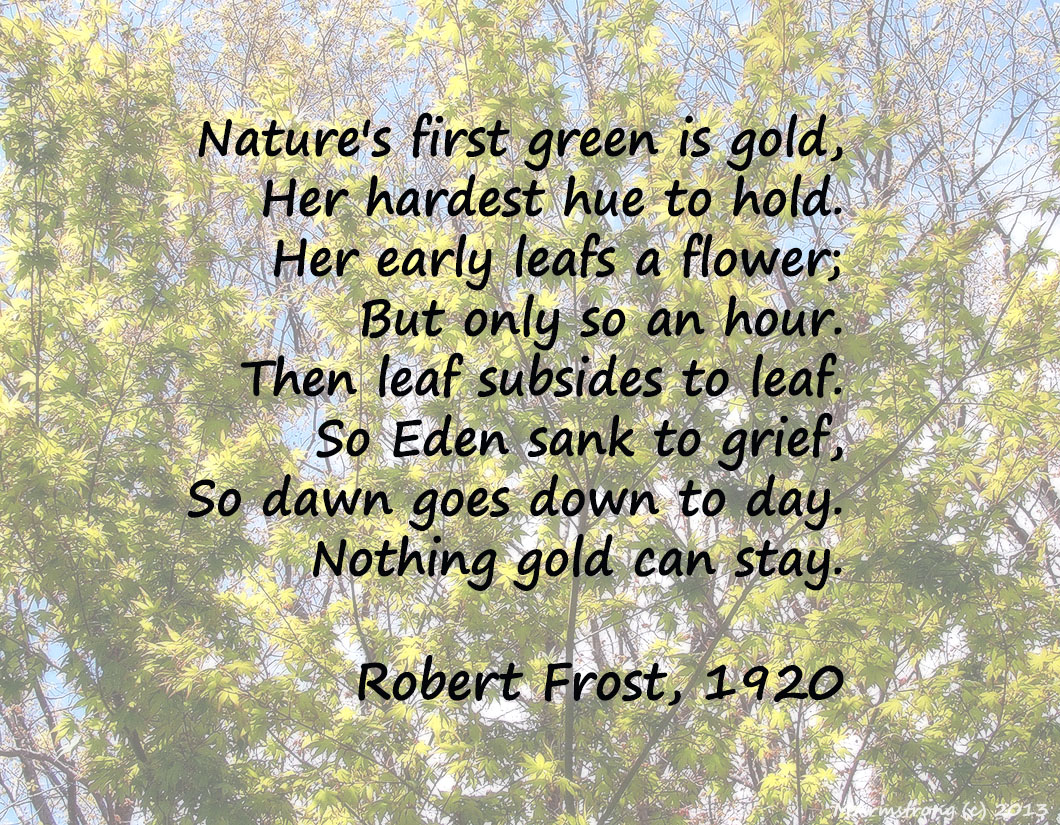 robert frost gold can stay
