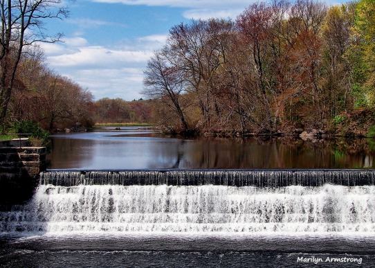 EARLY SPRING AT THE DAM