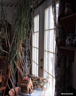 Window light dining room