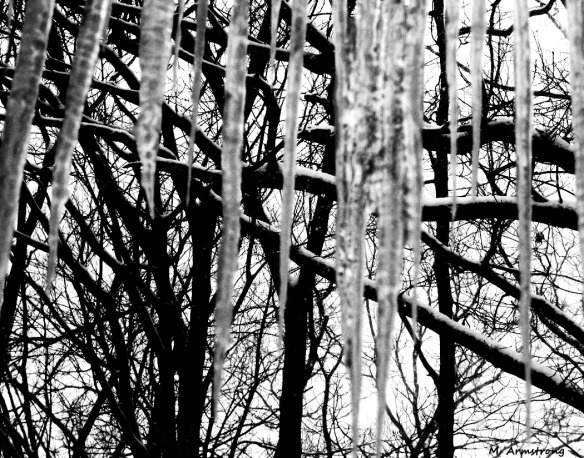 75-BW-icicles-03
