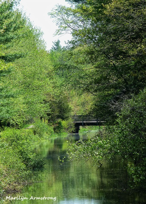 72-Canal-0514_034