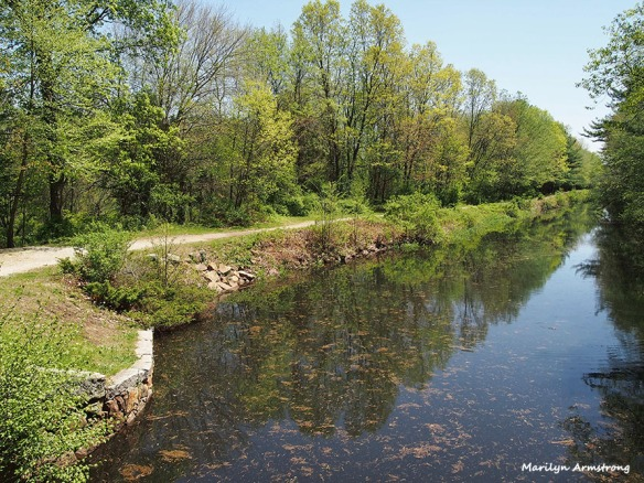 Canal in spring - May