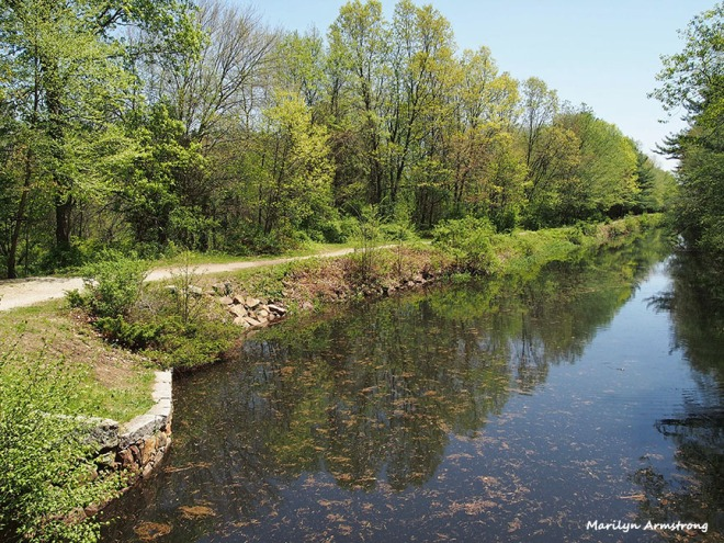 The Blackstone Canal in May