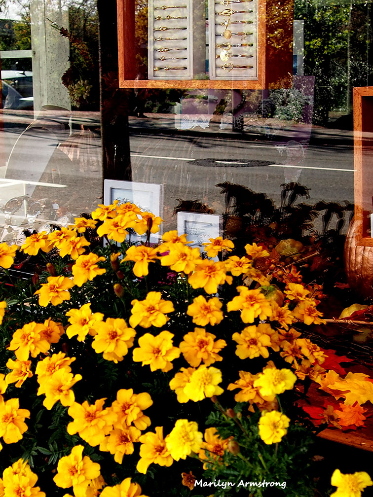 Hyannis flowers shop