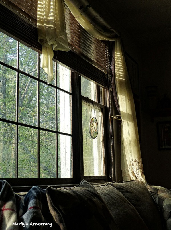 75-051214-Sunlight_13