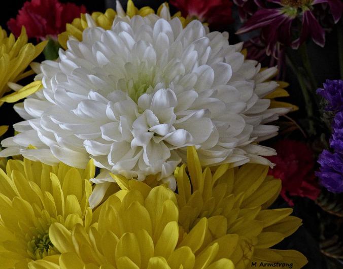 75-Bouquet-MothersDay_6