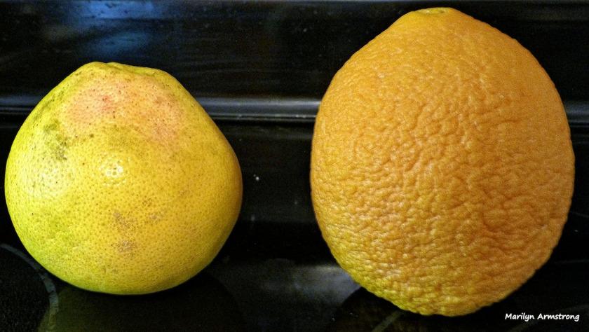 The big fruit is the orange