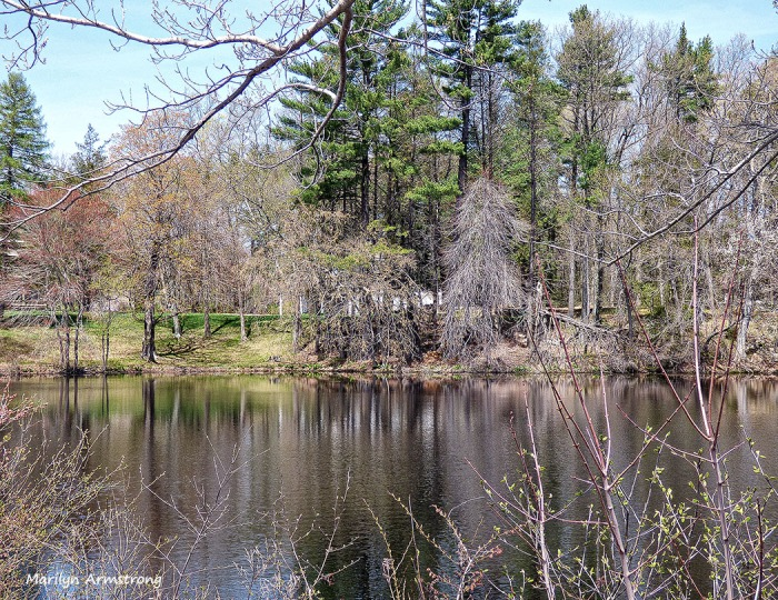 75-POND-May2014_046-2