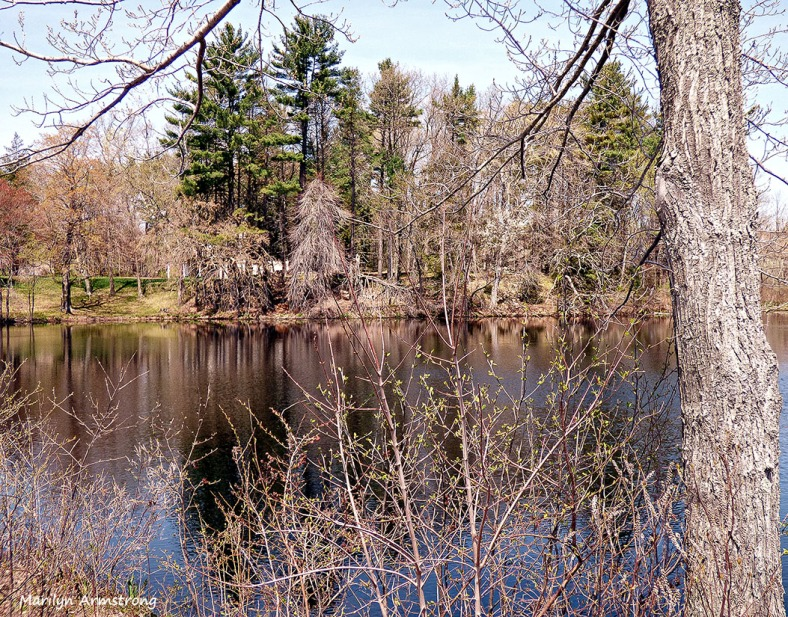 75-POND-May2014_047
