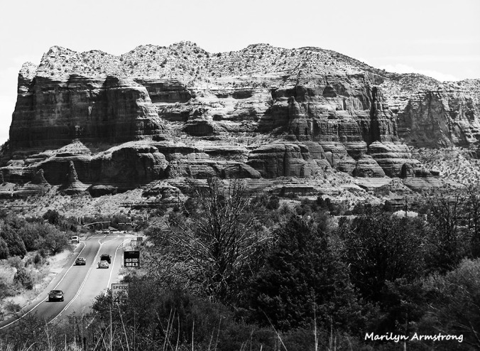 arizona painted desert BW