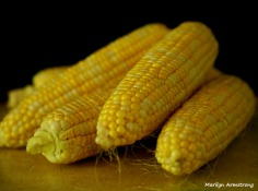 Fresh corn - victuals
