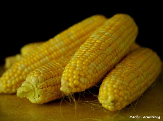 Fresh corn - victuals