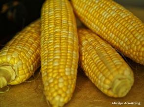 corn in kitchen