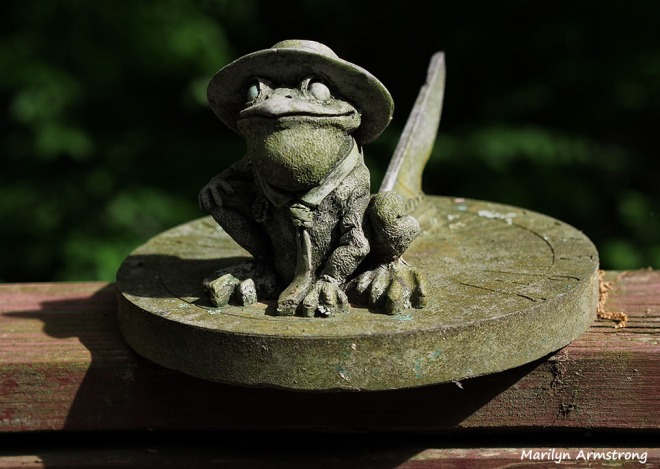 My froggy sun dial on the deck.