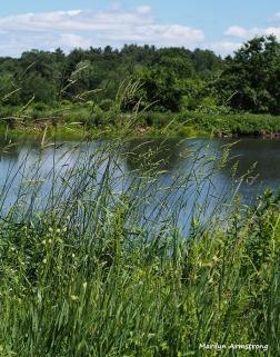 River Bend Farm river