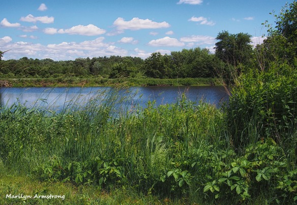 River Bend Blackstone River valley