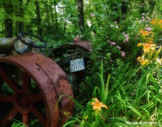 72-Tractor-29Jun_13