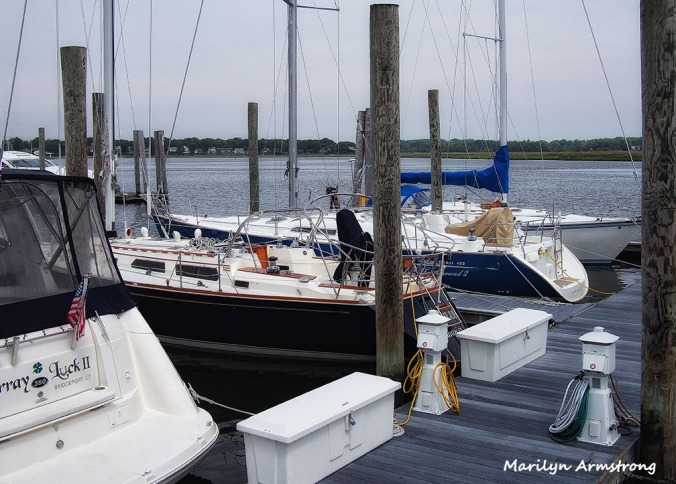 between at the marina 1