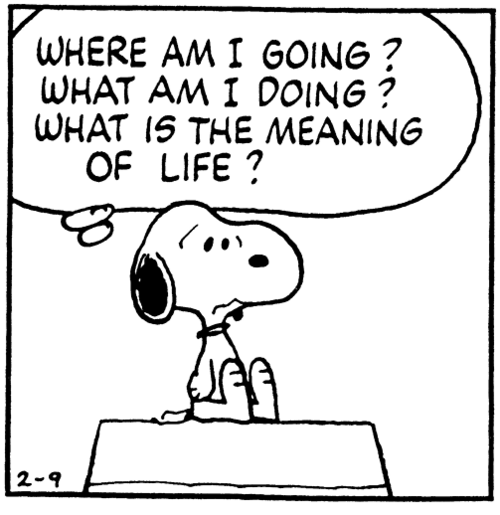 meanin-of-life-snoopy