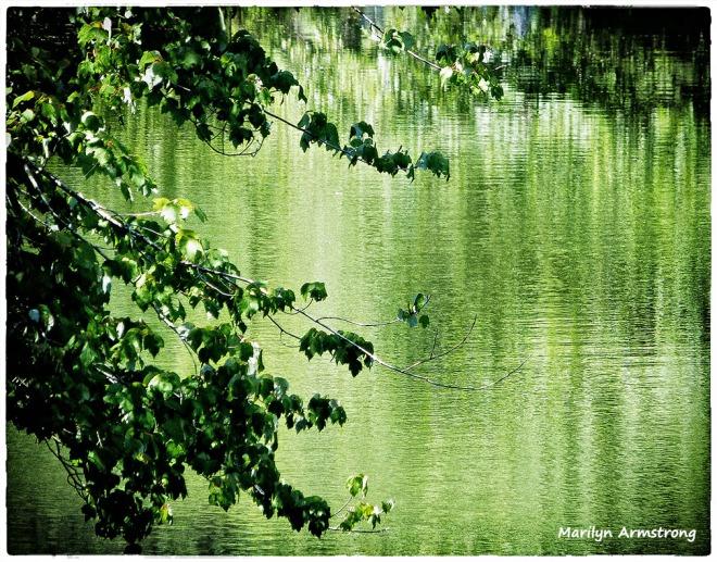 72-RI-River_23