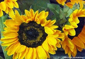 72-Sunflowers2_16