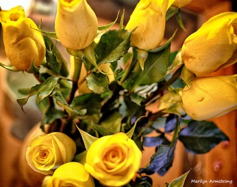 yellow roses anniversary bouquet