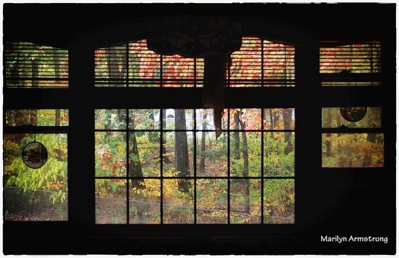 Autumn through the window