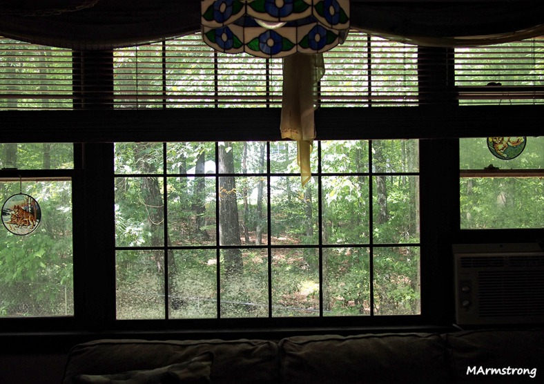 picture window living room September summer