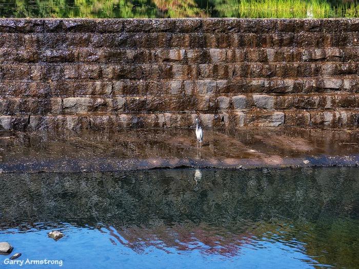 Mumford River - September 2014