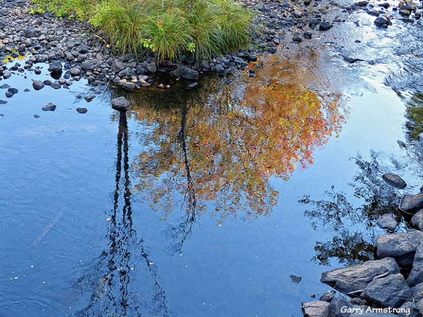 Pretty reflections in the shallow puddles of the Mumford