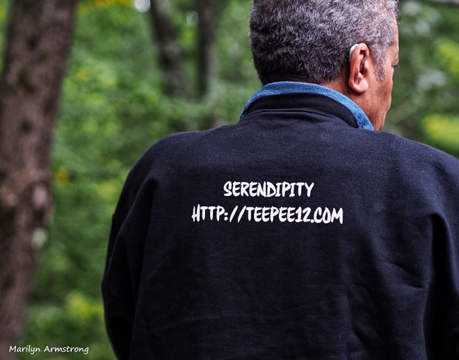serendipity sweat shirt back