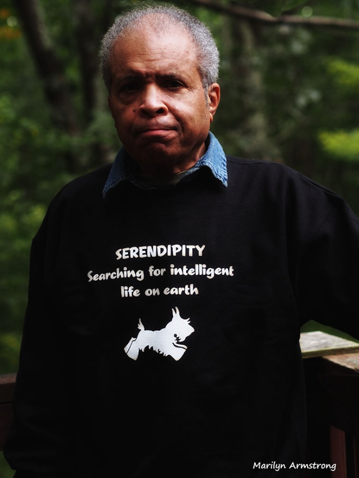 serendipity sweat shirt garry