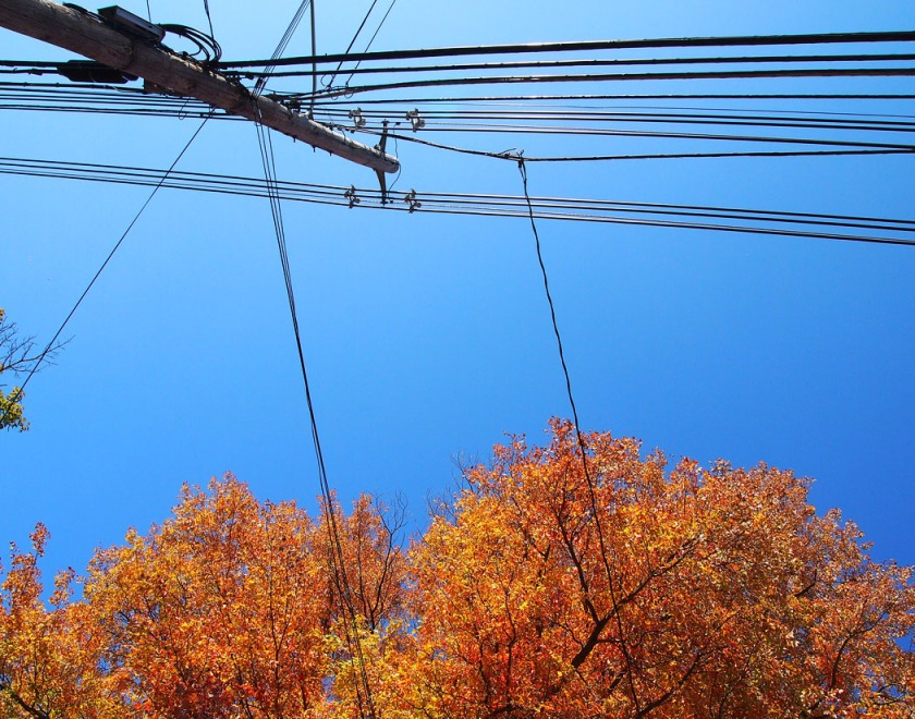 wires and blue sky