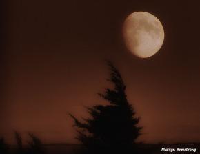 72-BW-Bad-Moon-Monochrome_1