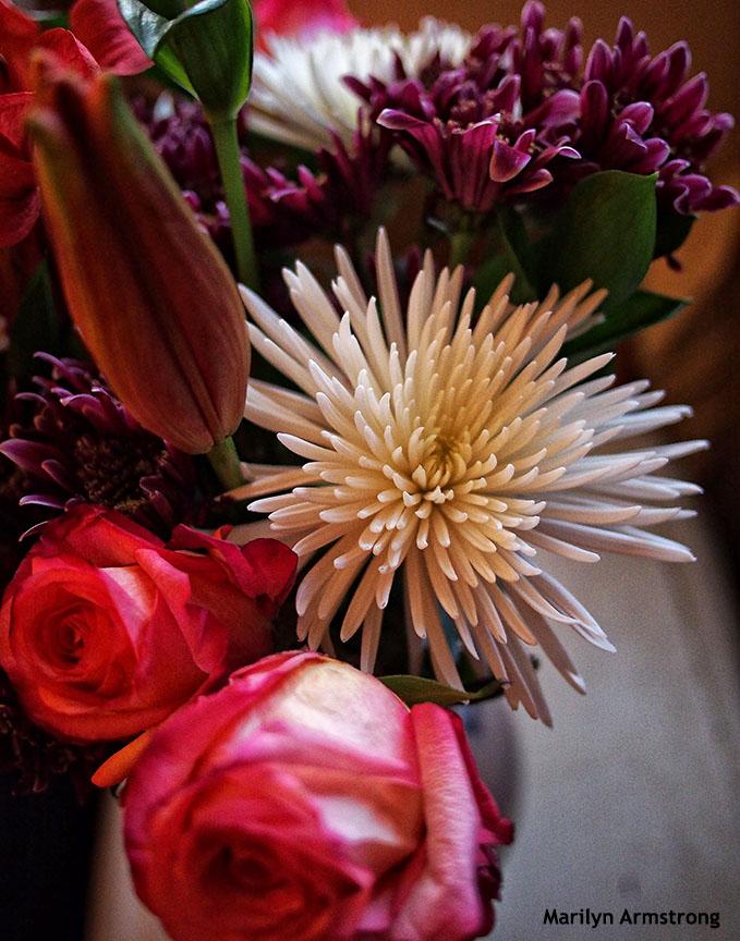 bouquet - october