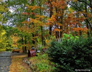 72-Foliage-9-30-14_003