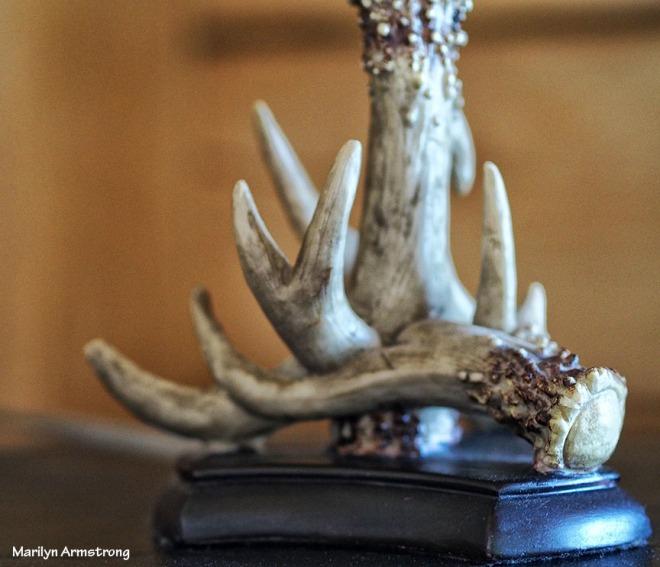 Moose antler lamp base
