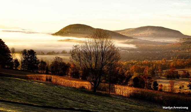 Morning in Vermont, October 2014