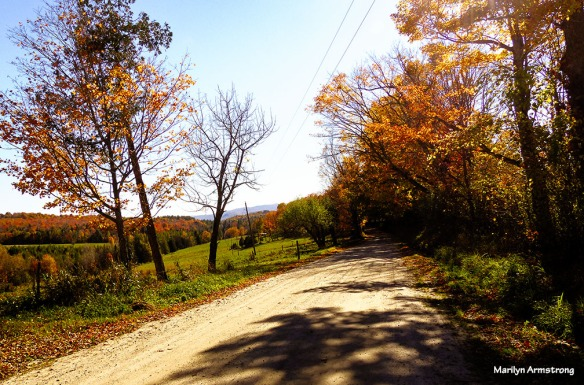 Quiet country roads