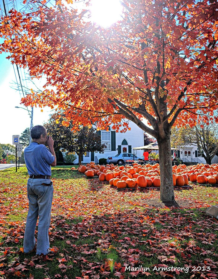 AUTUMN on Cape Cod garry