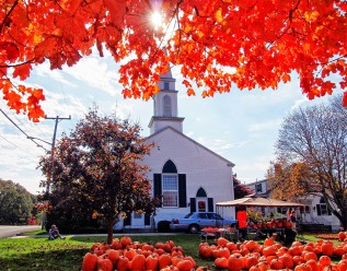 pumpkin patch with steeple