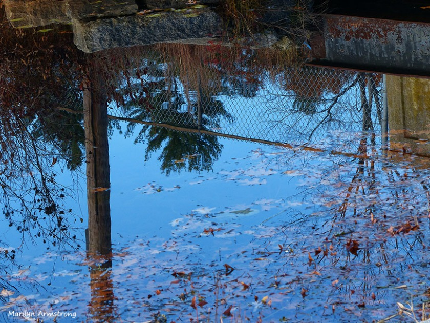 72-Reflection-Whitins-Pond_033