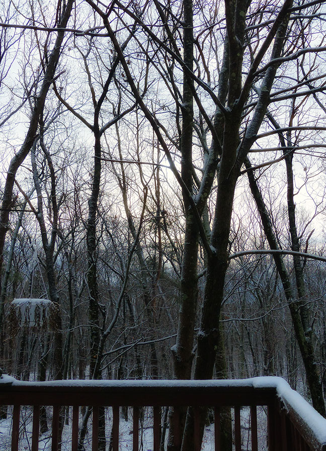 72-Thanksgiving-First Snow_04
