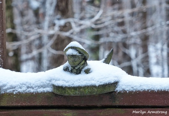 72-Thanksgiving-First Snow_12